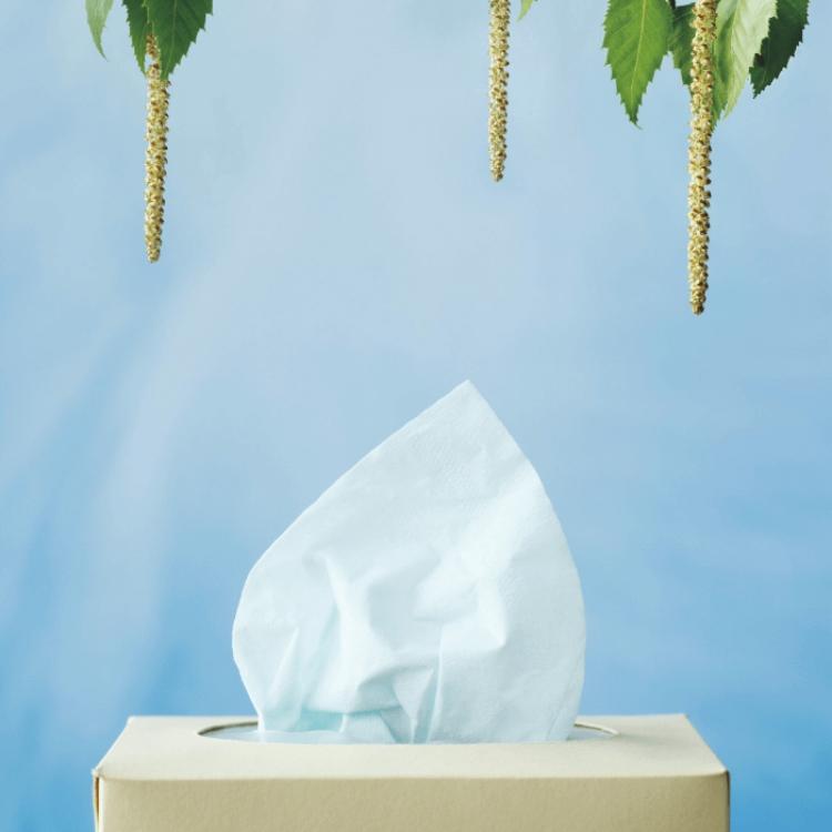 SOS Rinite Allergica